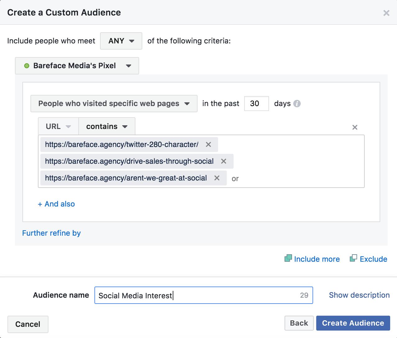 social media remarketing audience facebook